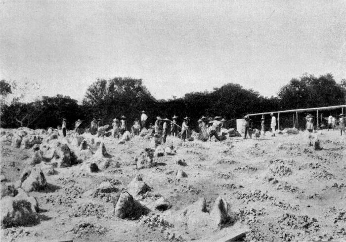 9 Nauru Mines