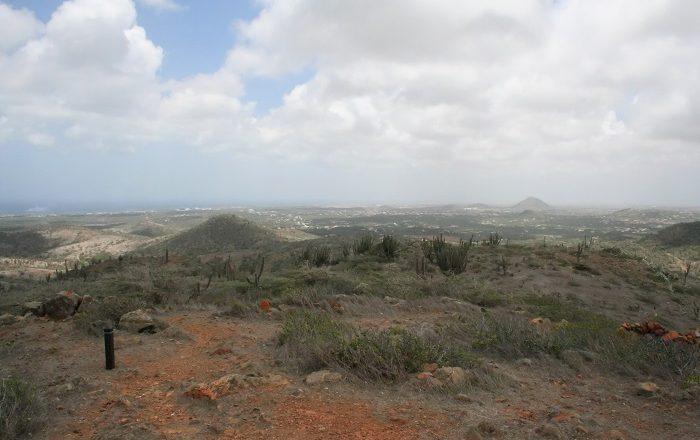 1 Jamanota Aruba