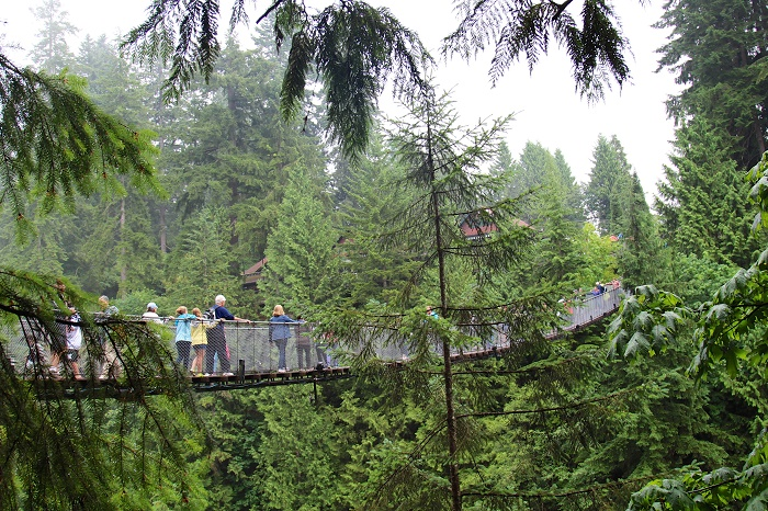 6 Capilano Bridge