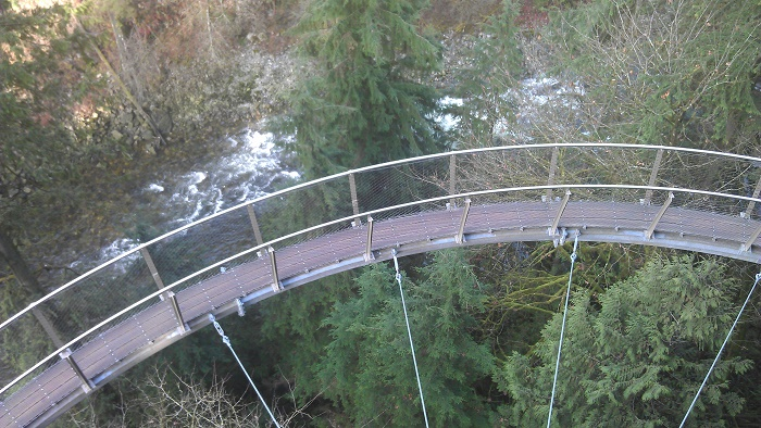7 Capilano Bridge