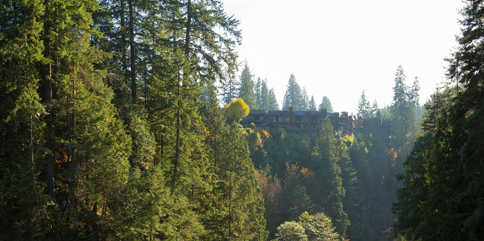 9 Capilano Bridge