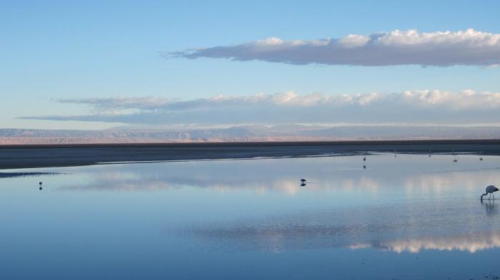 5 Salar Atacama
