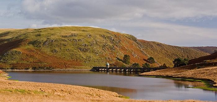 1 Elan Reservoirs