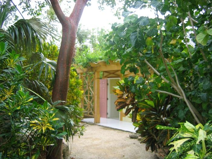 6 Cayman Botanic