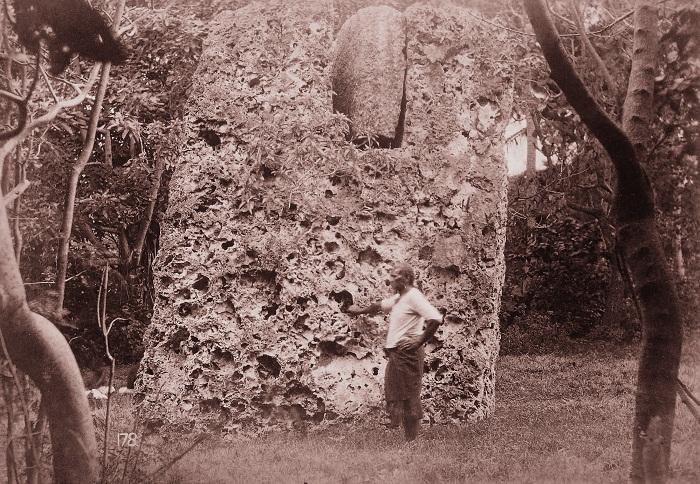 7 Maui Burden