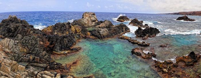 1 Conchi Aruba