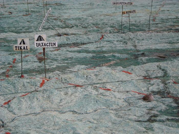11 Mapa Relieve
