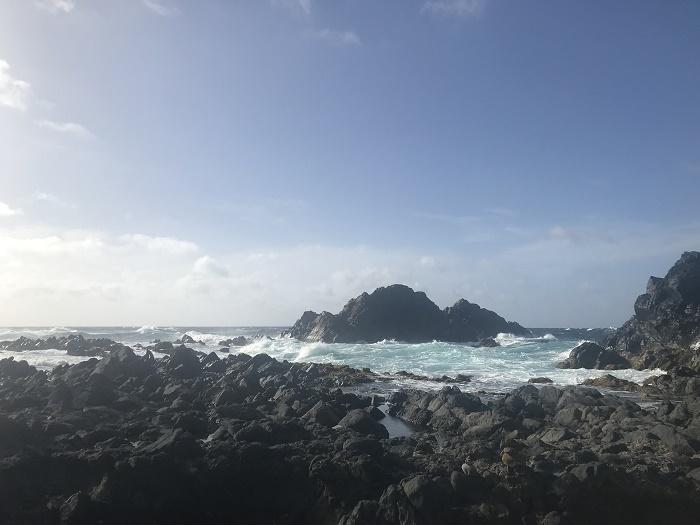 3 Conchi Aruba