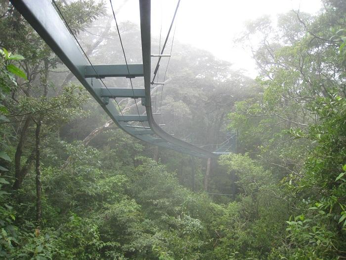 4 Monteverde