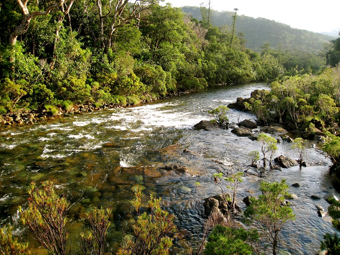 10 Blue River Caledonia