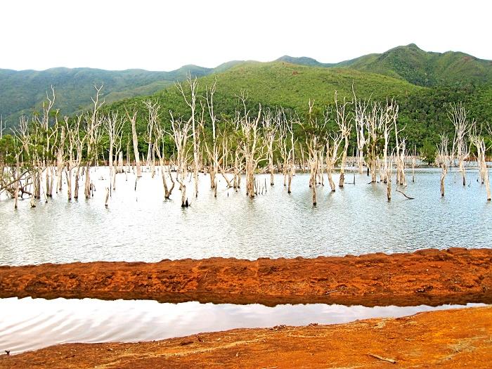 14 Blue River Caledonia
