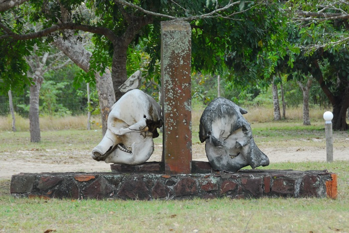 2 Maputo Reserve