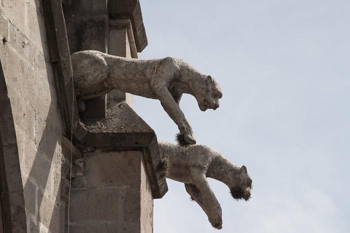 5 Quito Basilica