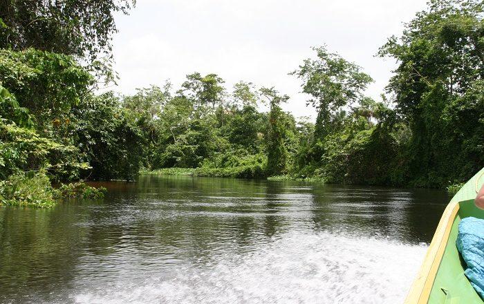 2 Orinoco Delta