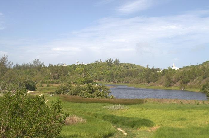 2 Spittal Pond