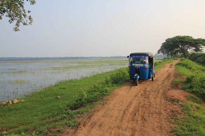 7 Yala Lanka