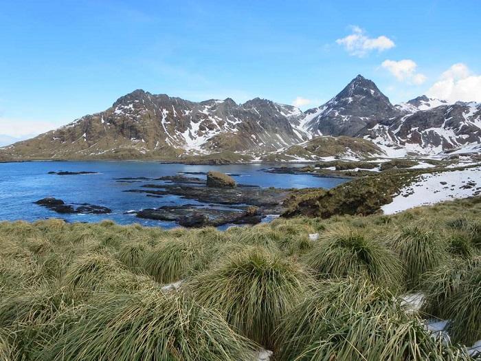 4 Cooper Island