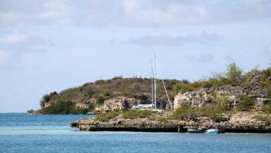 1 Bird Island