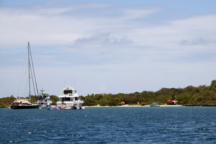 8 Bird Island