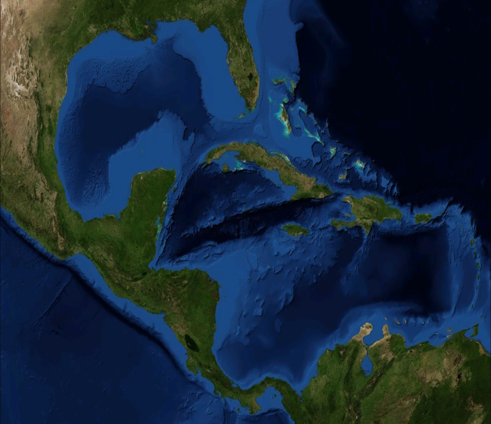 C. America & the Caribbean