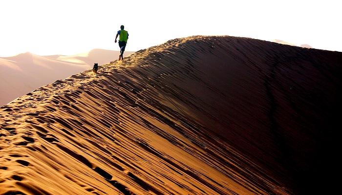 12 Namib Desert