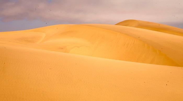 13 Namib Desert