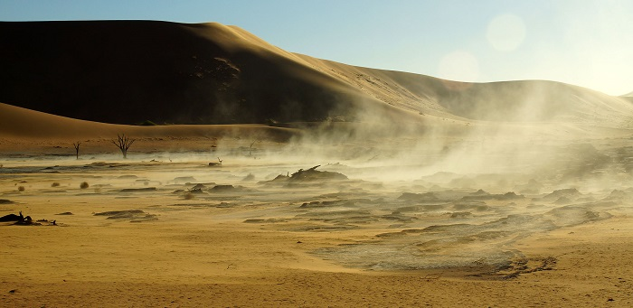 21 Namib Desert
