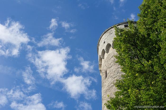 6 Hermann Tower