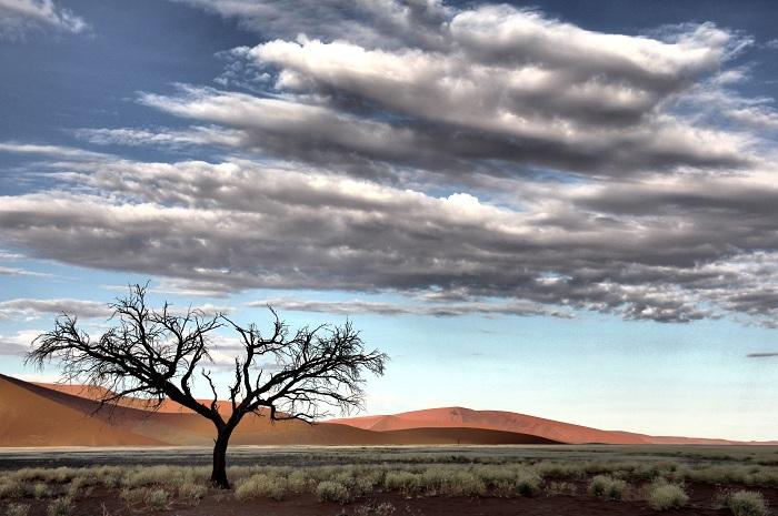 8 Namib Desert