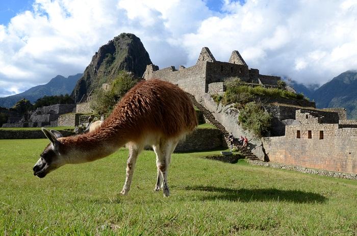 10 Machu Picchu