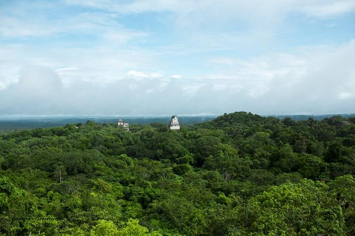 4 Tikal