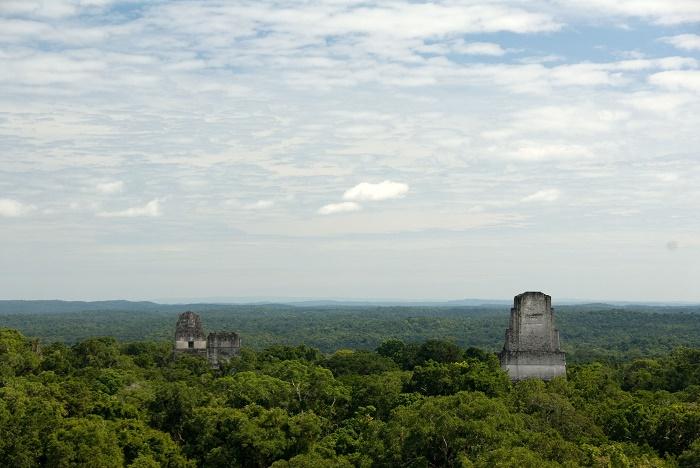 7 Tikal