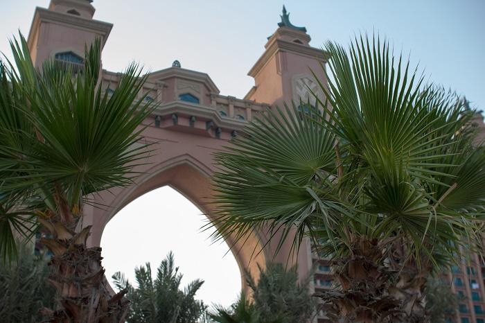 5 Atlantis Palm