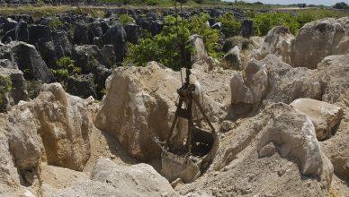 1 Nauru Mines