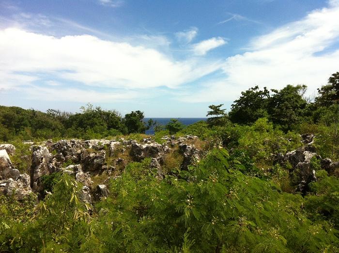 10 Nauru Mines