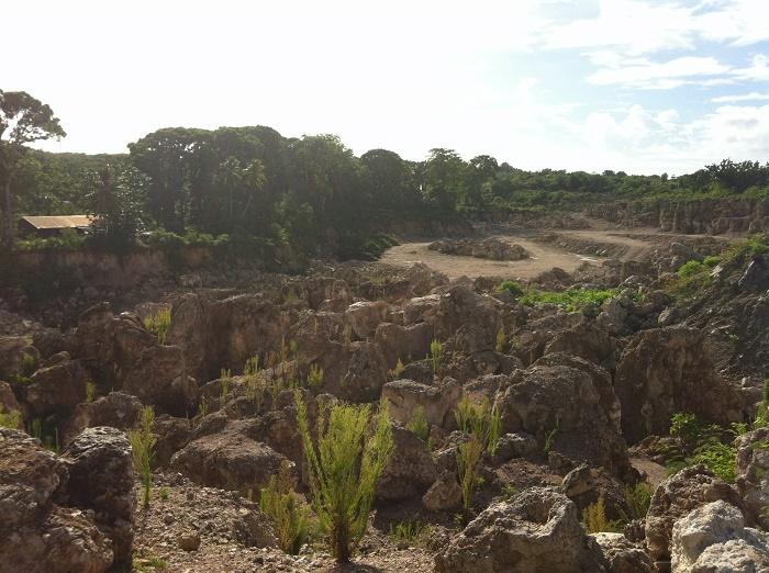 4 Nauru Mines