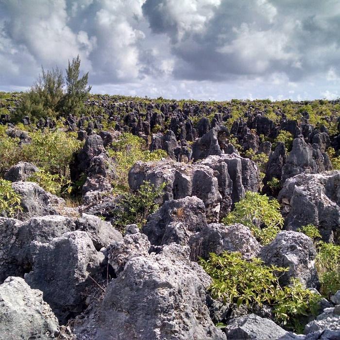 6 Nauru Mines