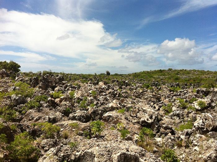 8 Nauru Mines