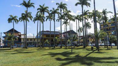 1 Palmistes Cayenne