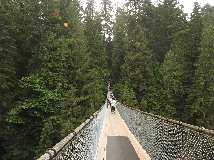 5 Capilano Bridge