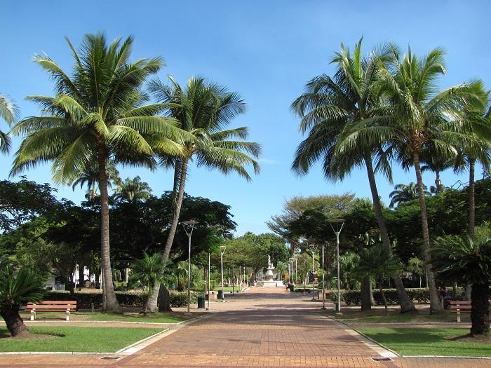 1 Coconut Square