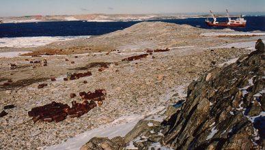 4 Casey Antarctica