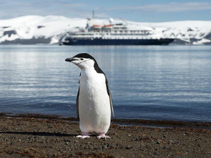 6 Deception Antarctica