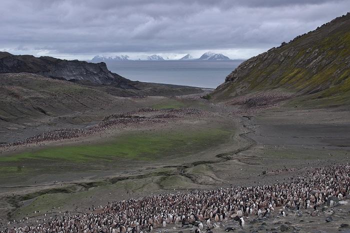 8 Deception Antarctica