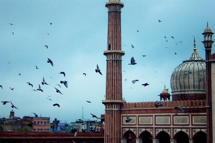 7 Jama Delhi
