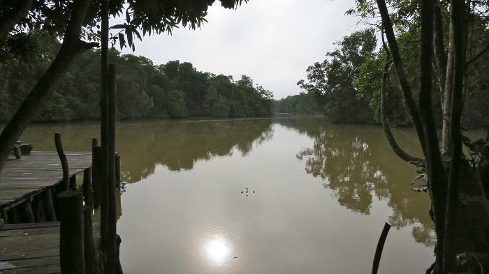 1 Orinoco Delta