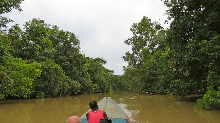 4 Orinoco Delta