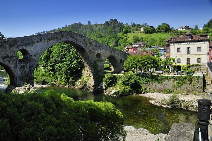 5 Ognis Bridge