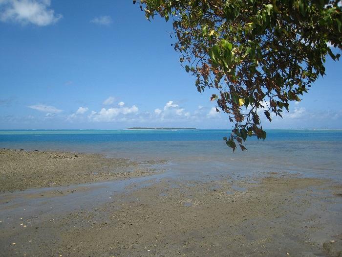 5 Cocos Guam