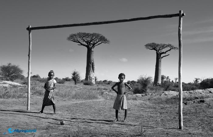 9 Baobabs